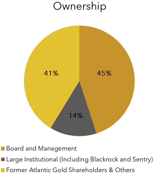 Ownership Pie Chart